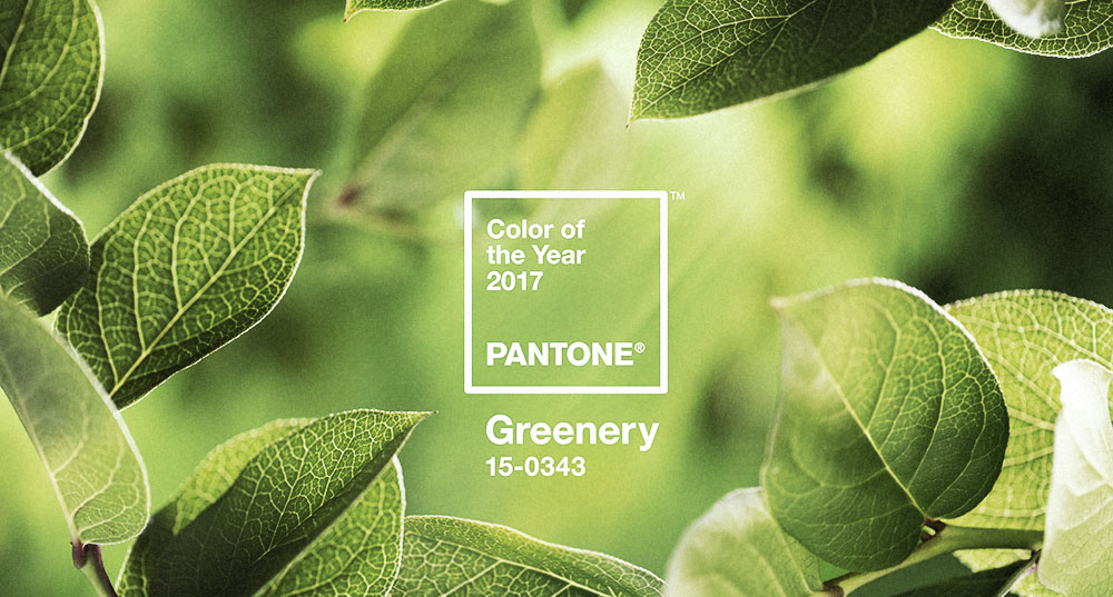 9 Pantone Colour of the Year