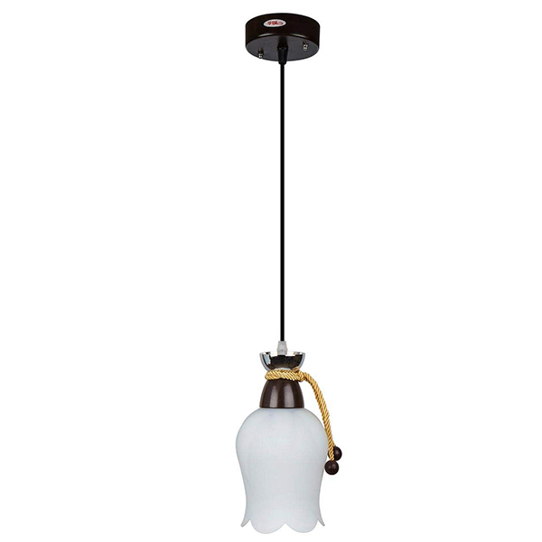 چراغ آویز فلزی و دایکاست چشمه نور کد A1278.1H-BR قهوه ای