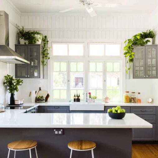 گیاهان آشپزخانهای